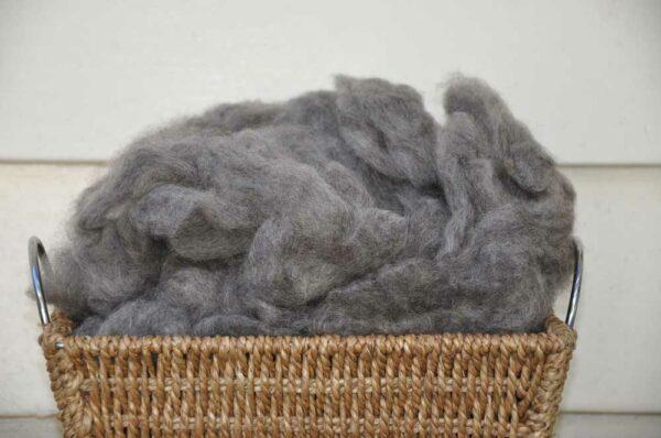 Gotland Fleece fibre carded image