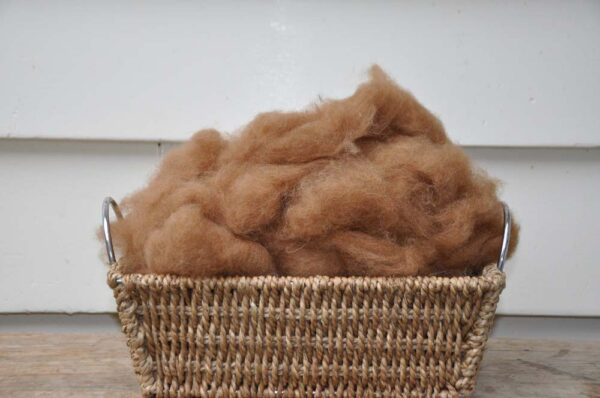 Alpaca Fibre Ginger for Spinning and Craft Projects
